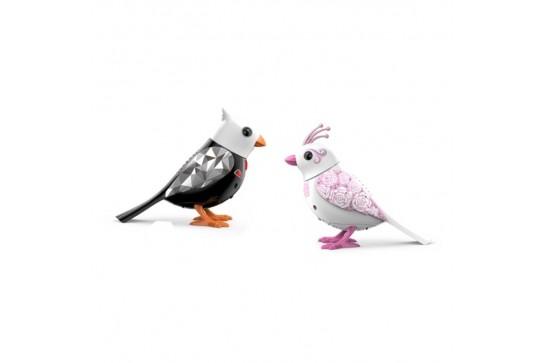 Ptaszki Digibirds Para Młoda Dumel Discovery